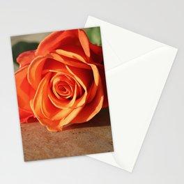 Three Days on Mimosa Lane Stationery Cards