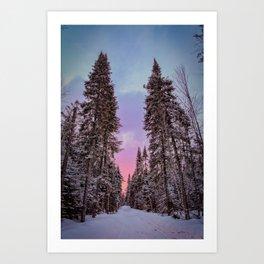Adirondack Sunset through the trees. Adirondack Mountains. Art Print