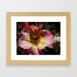 Beauty And Bee Framed Art Print