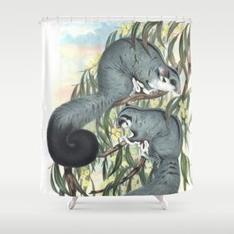 Sugar Glider in the forest of Australia and USA Shower Curtain