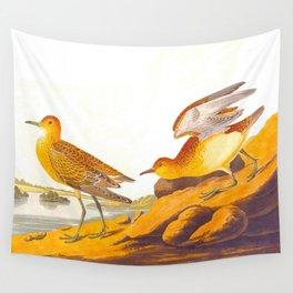Buff-breasted Sandpiper Bird Wall Tapestry