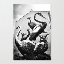 ROA. Canvas Print
