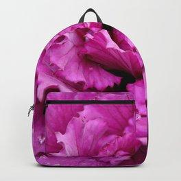 Pink ornamental cabbage Backpack