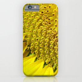 Nature Close-up - Mind-blowing mathematics in a sunflower iPhone Case
