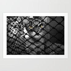 Tiger Inside Art Print