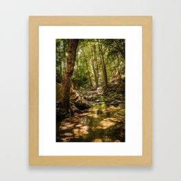 Streaming Framed Art Print