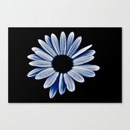 Black hole daisy Canvas Print