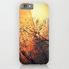 The storm Slim Case iPhone 6s