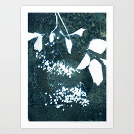 Botanicus (17), Botanical Art Print, Art Print, Botanical Poster, Vintage Print, Home Decor Art Print
