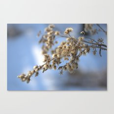 Winter's Peace Canvas Print