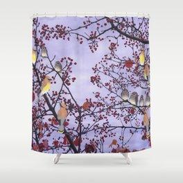 cedar waxwings and berries Shower Curtain