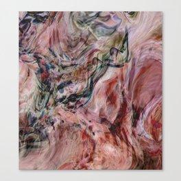 Desert Veils Canvas Print