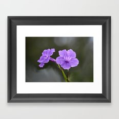 Flowerinas Framed Art Print