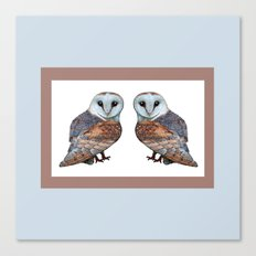 The Owl Collection - Barn Owl Canvas Print