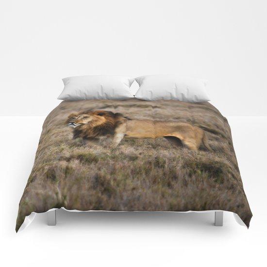 African Lion in Kenya Comforters