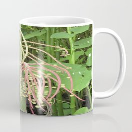 Unusual Hanging Tropical Plant in Maui Coffee Mug