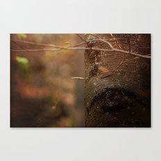 Begin Canvas Print