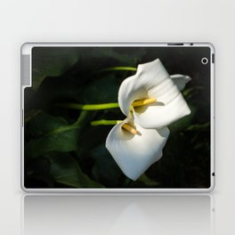 Close-up of Giant White Calla Lily Laptop & iPad Skin