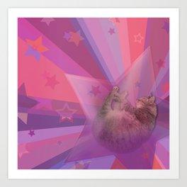 Kitty Cat Star Art Print