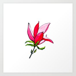 Magnolia the Anarchist Art Print