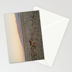 Desert Coyote Stationery Cards