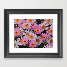 Petals, Petals, Petals Framed Art Print