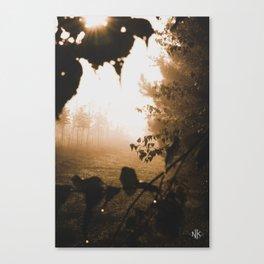 8.30.17 Canvas Print