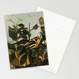 Neltje Blanchan - Bird Neighbours (1903) - Blackburnian Warbler Stationery Cards