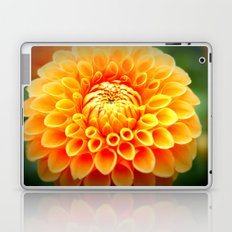 In Bloom! Laptop & iPad Skin