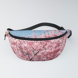 Plum Blossoms Japanese Ume Tree in Early Spring Photography Fanny Pack