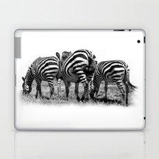 Three Zebras Laptop & iPad Skin