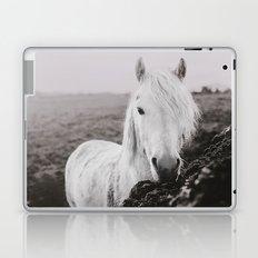Beautiful Grey Laptop & iPad Skin