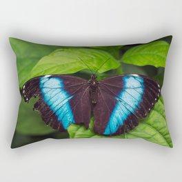 Banded Blue Morpho (𝘔𝘰𝘳𝘱𝘩𝘰 𝘢𝘤𝘩𝘪𝘭𝘭𝘦𝘴) Rectangular Pillow
