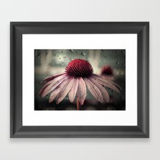 Sad Solitude Framed Art Print
