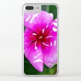 # 323 Clear iPhone Case