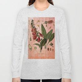 Vintage Botanical Illustration Collage, Foxgloves, Digitalis Purpurea Long Sleeve T-shirt