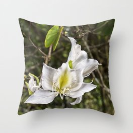 Beautiful butterfly tree bloom Throw Pillow