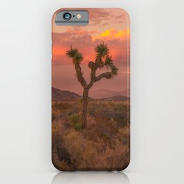 Joshua Tree Perfect Sunset iPhone Case