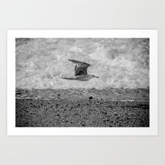 Arrival of the Birds # 1 Art Print