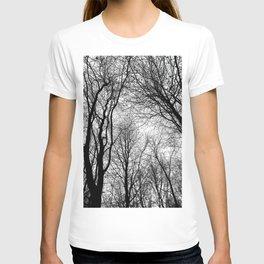 Tree Silhouette Series 6 T-shirt