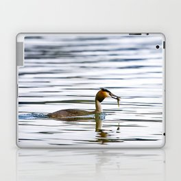 Great crested grebe and its catch Laptop & iPad Skin