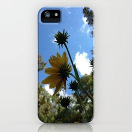 SwampSunflower iPhone Case
