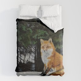 Red Fox of Algonquin by Teresa Thompson Comforters