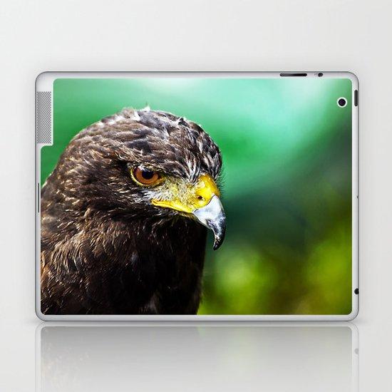 Halk Laptop & iPad Skin
