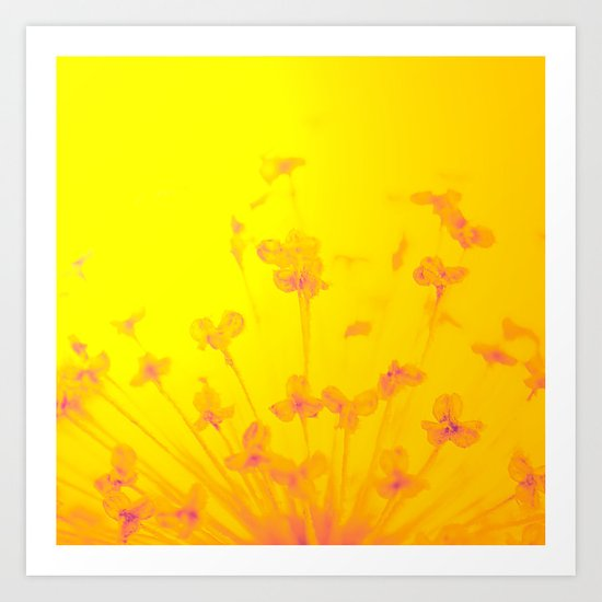 Bright Sunny Morning Art Print