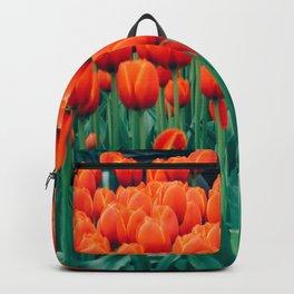 Tulips field 16 Backpack