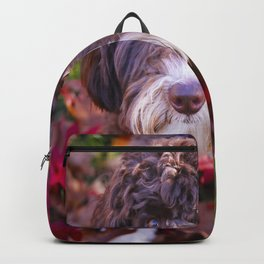 Labradoodle In Autumn Backpack