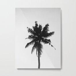 Palm, Tree, Nature, Tropical, Modern, Minimal, Interior, Wall art Metal Print