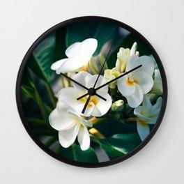 Pua Melia Na Puakea Onaona Tropical Plumeria Maui Hawaii Wall Clock