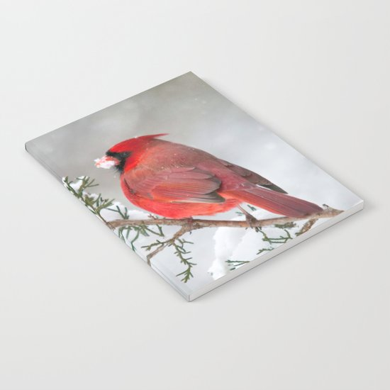 Snow on His Face (Northern Cardinal) Notebook